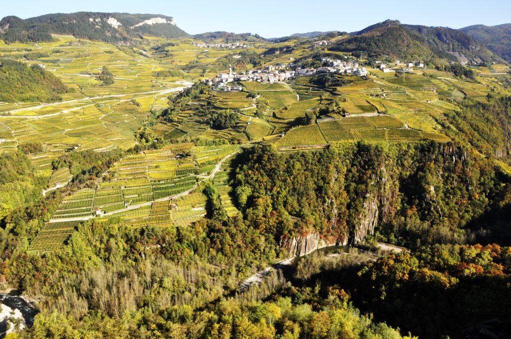 Villa Corniole tra i baluardi della viticoltura della Valle di Cembra