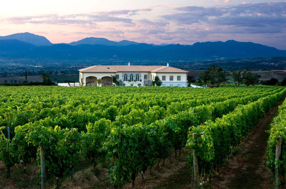 Il miglior vino rosso italiano è un LUNGAROTTI