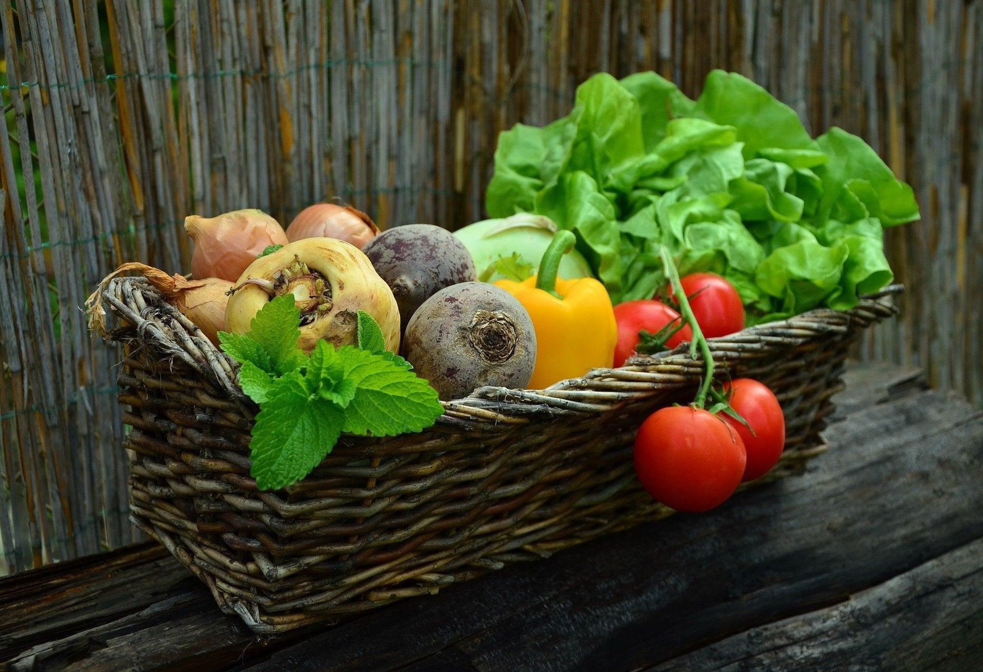 Il meglio della produzione agricola